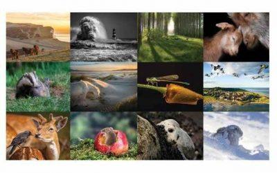 BBC Countryfile Calendar 2020